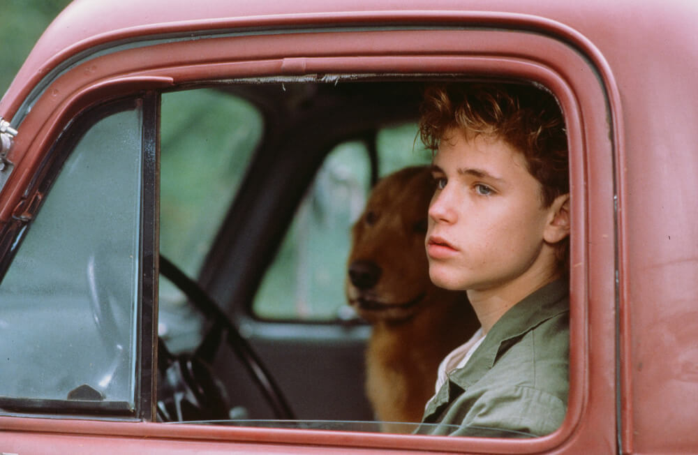 Corey Haim Files Bankruptcy