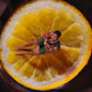Jason Derulo's 'Take You Dancing' Video